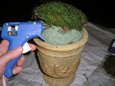DIY Moss Ball Planters