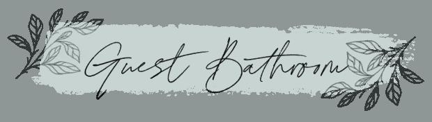 Jennifer Rizzo Guest Bathroom
