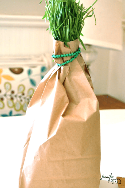 Growing and Drying lavender in a paper bag in a cool dark place