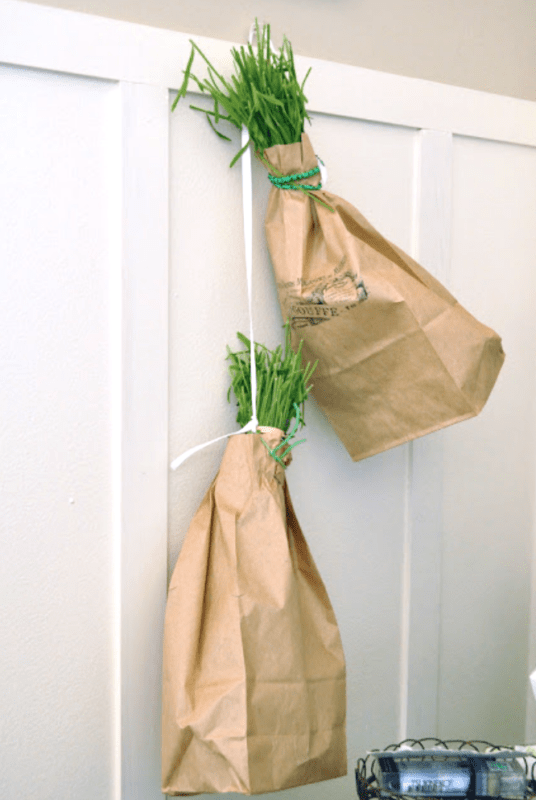 Drying lavender in paper bags