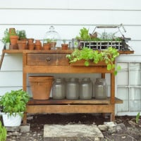 work bench reused as a potting bench
