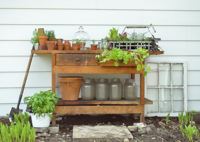 Vintage work bench re-purposed as a potting table