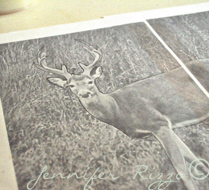 deer image for silhouette making