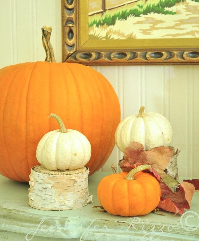 Real and fake pumpkins mixed together