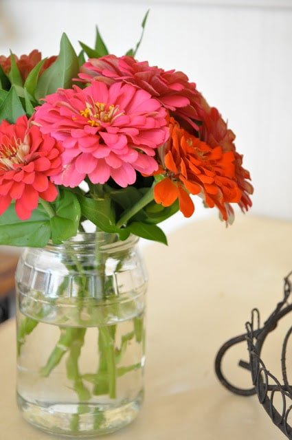Use recycled jam and pickle jars as vases as a great recycle.