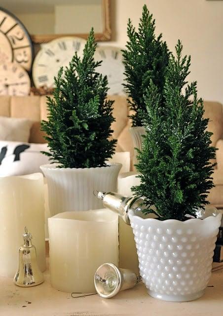 Mini-merriness with mini trees….