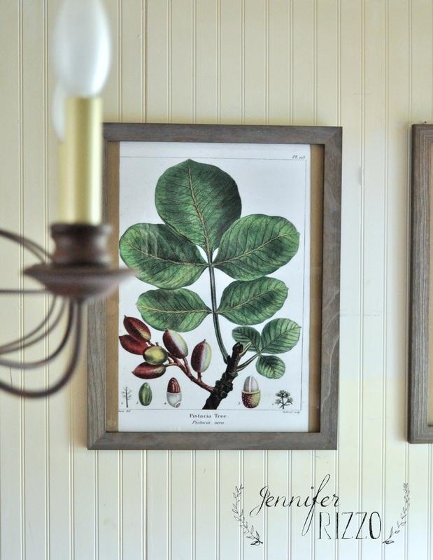 How to make inexpensive botanical art prints