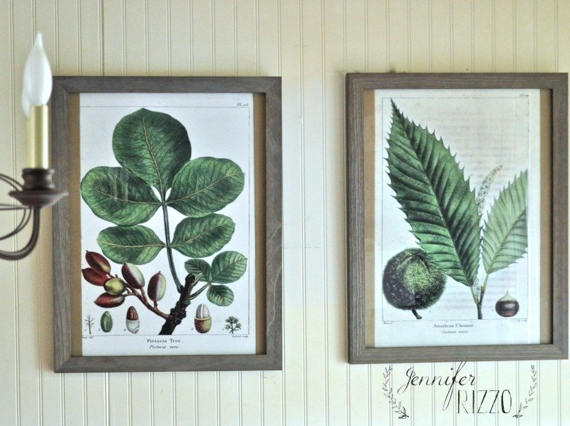 Make large botanical art prints for a fraction of the price! In budget decorating