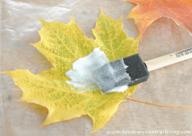 Brushing glue on a leaf to make a place card