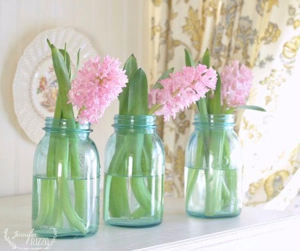 Pink hyacinths look pretty in vintage blue canning jars as vases