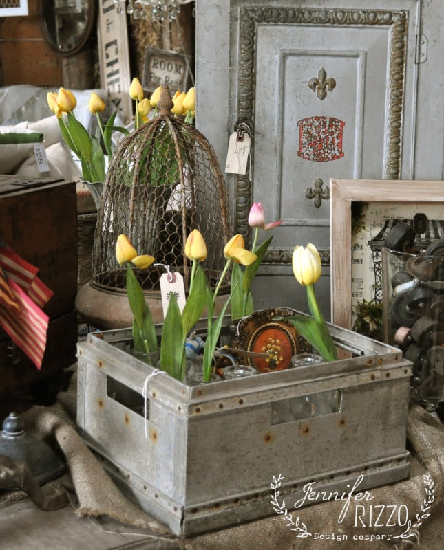 Tulips in a metal container