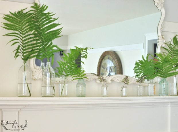 Mixture of ferns on a faux mantel