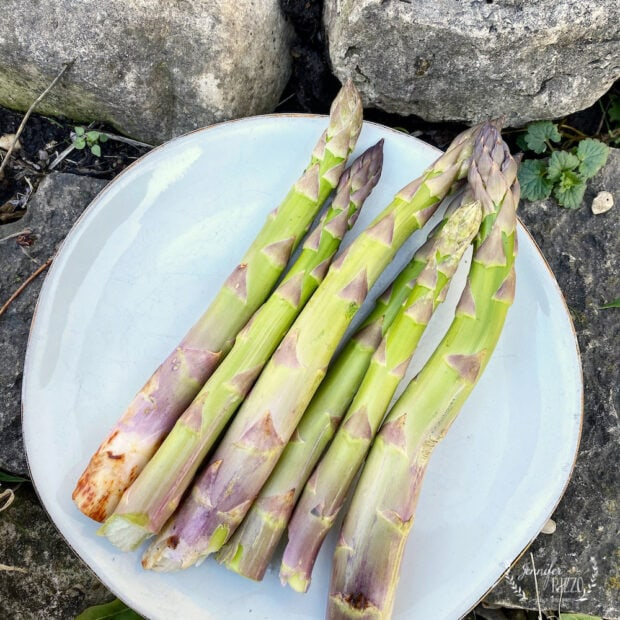 How to oven roast and cook fresh asparagus