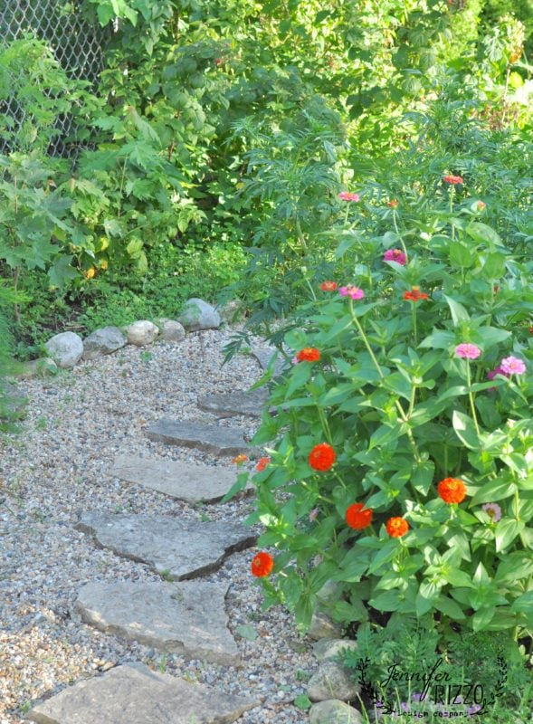 Pea gravel path on raspberry lane