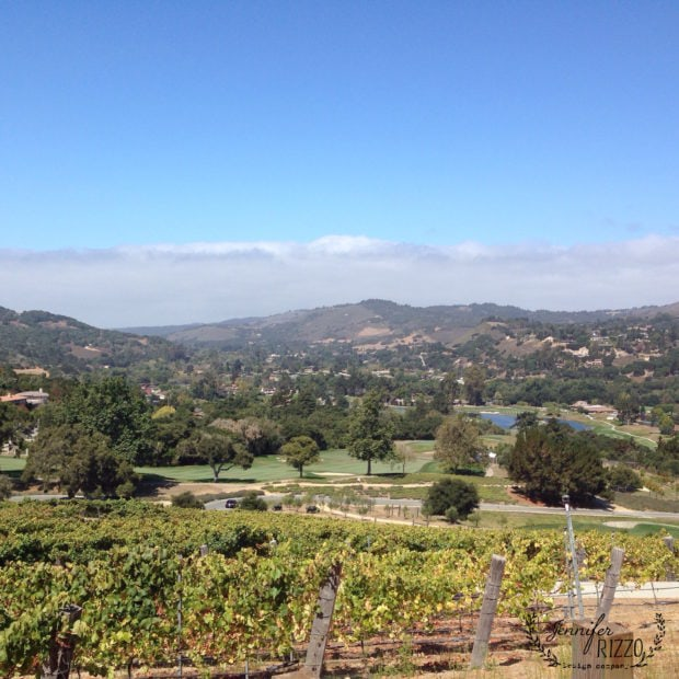View From Carmel Valley Ranch