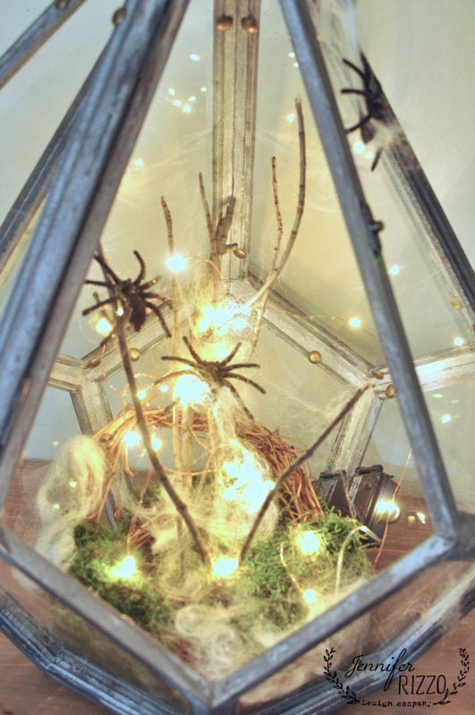 halloween terrarium with fun fake spiders and moss