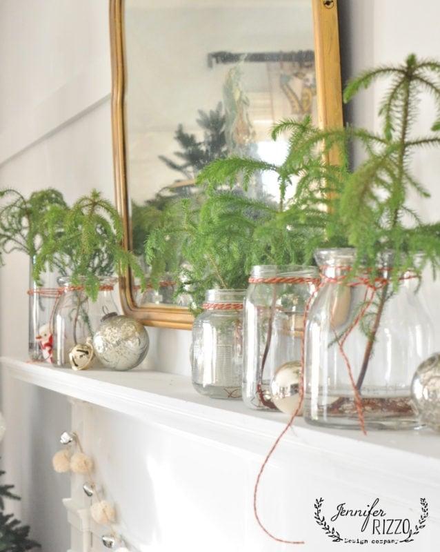 Real trees in jars Christmas mantel