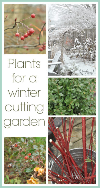 Plants for a winter cutting garden