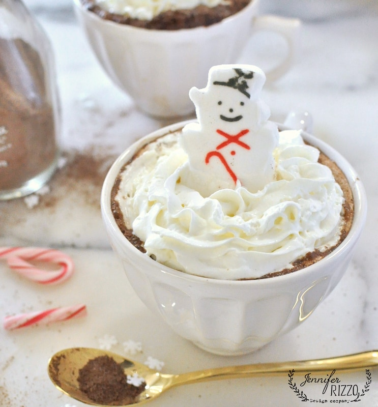 Fun winter treat hot cocoa and marshmallows idea