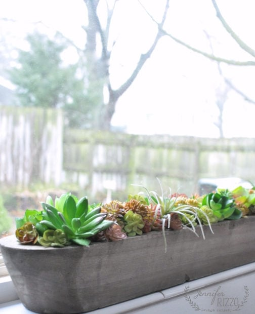 Succulent window planter DIY