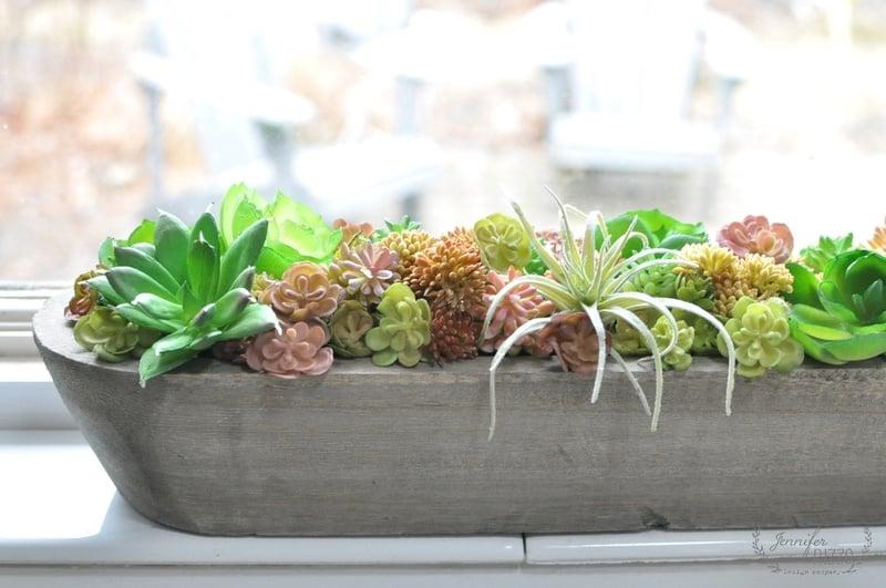 Succulent windowsill planter for winter color