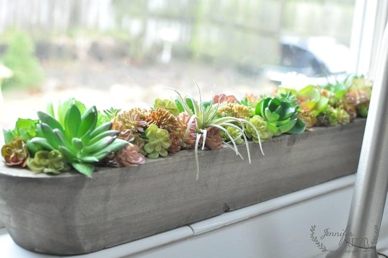 Succulent and Cactus Decorating Ideas