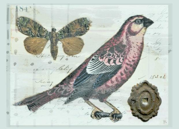 Vintage boho bird free printable