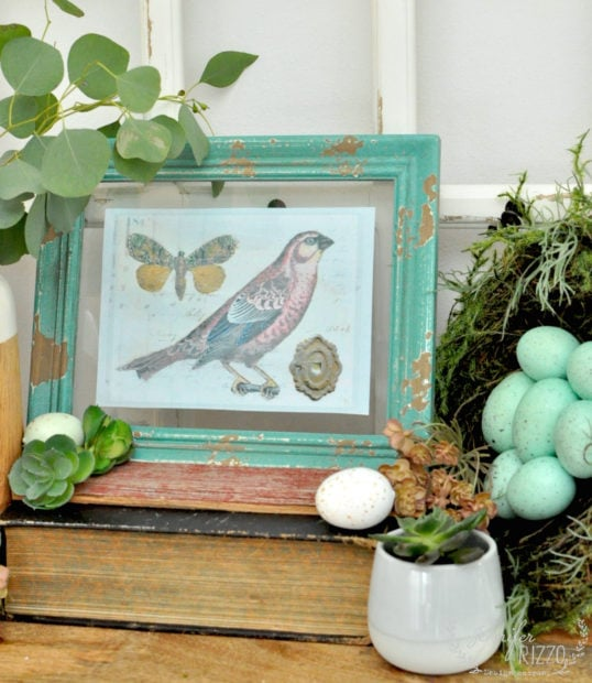 Spring bird printable with free spring bird and vignette