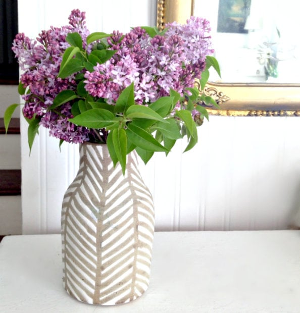 Why didn't my lilacs bloom this year? Troubleshooting tips for big, beautiful flowers