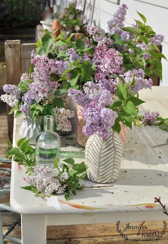 Late blooming lilacs in mixed vases