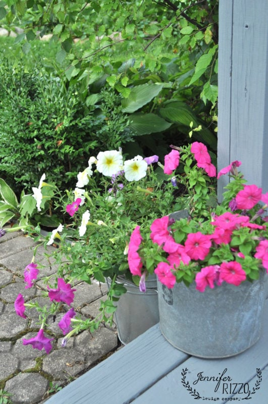 Flowers in buckets on painted deck
