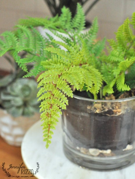 Faux fern in soil and glass vase made from clay