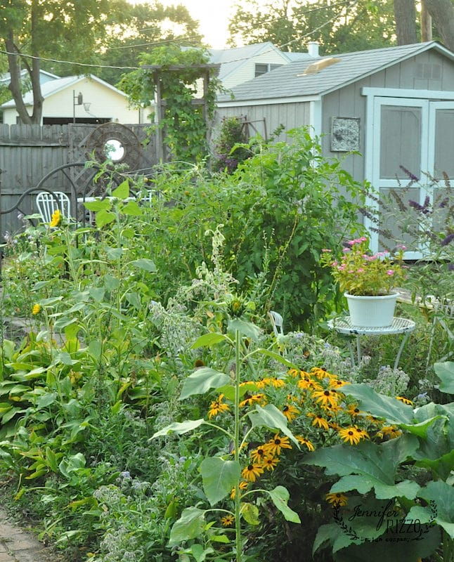 View of midwest garden