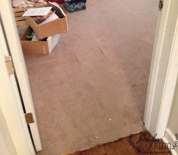 Carpet floors before