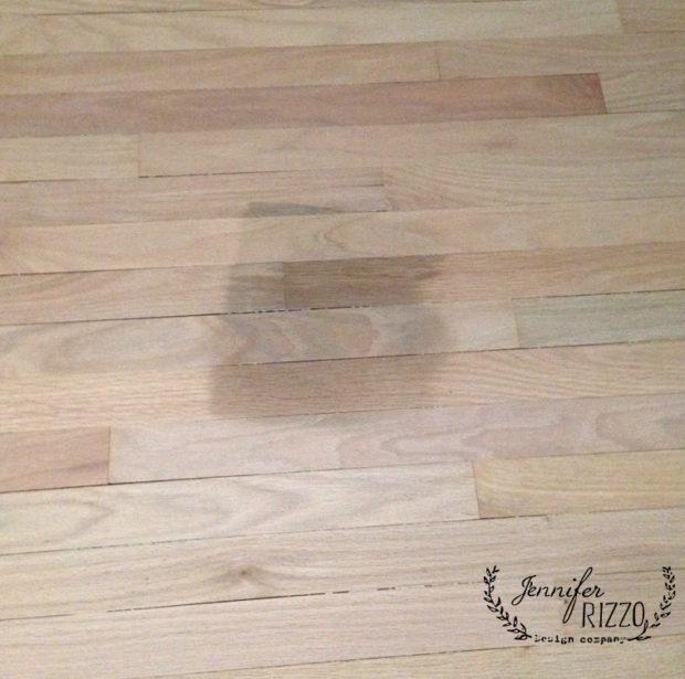 Cat stain on sanded wood floors