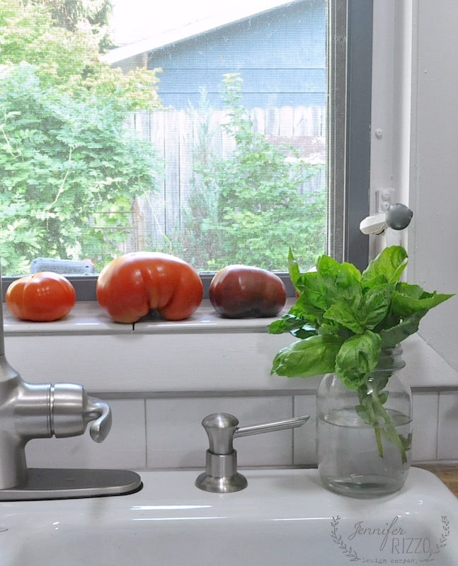 Produce on kitchen window