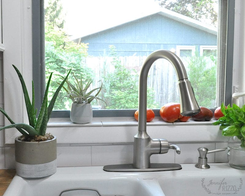 Kitchen window view with plants