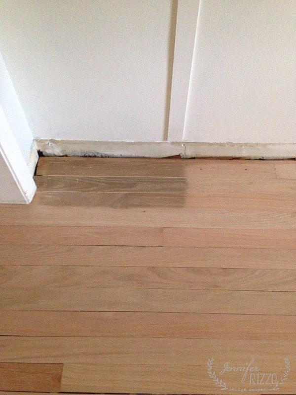 Dark cat stain on the floor