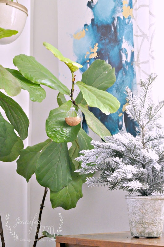 Ornamental fig tree and ornament