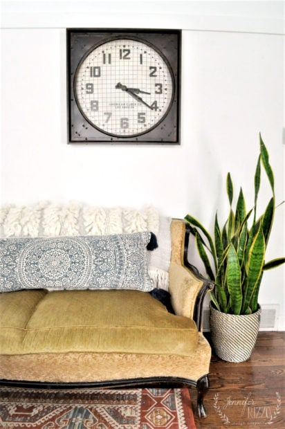 Wall clock and snake plant