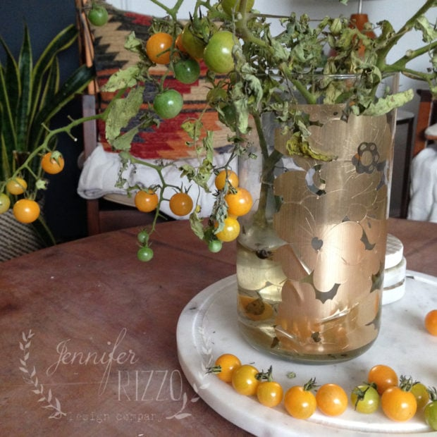 Ripen the end of season tomato plants by breaking off the stem and putting in a vase of water.