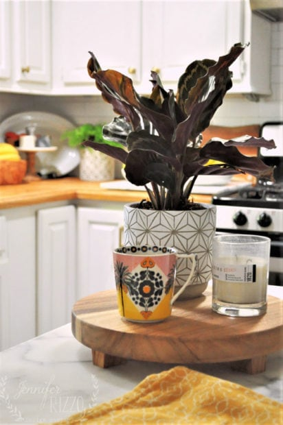 Anthropolohie mug and plant in kitchen decor