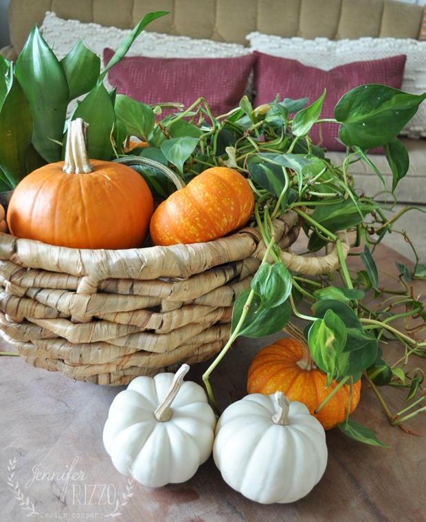 Basket with plants and pumpkins