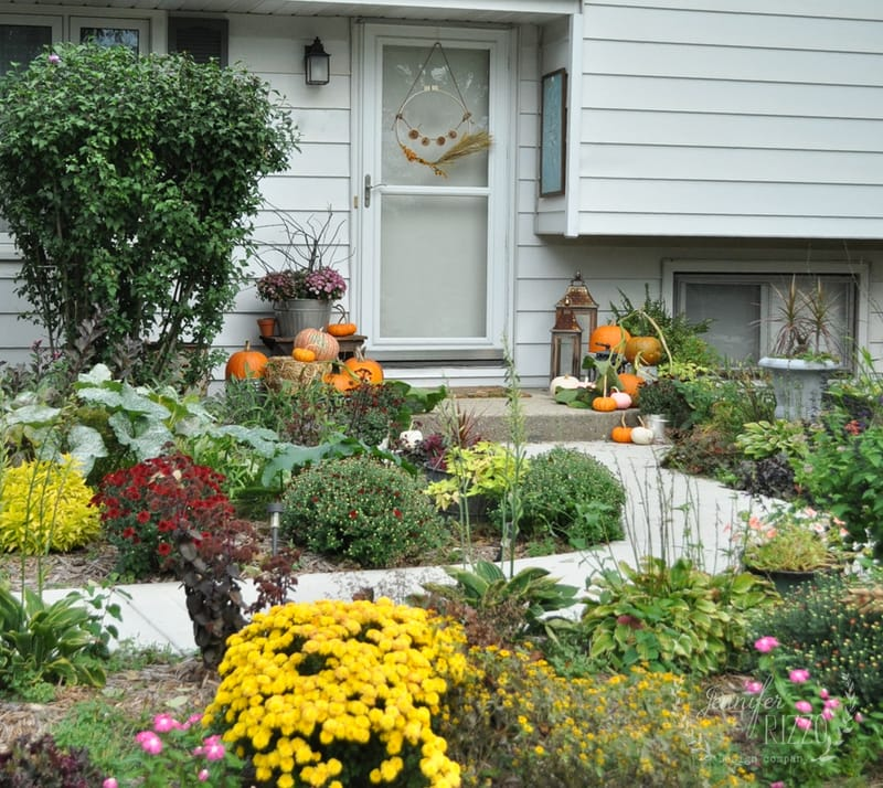 Fall Front Step with Pumpkins on the Vine