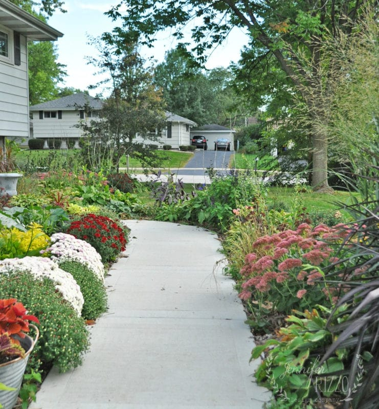 Front walk with Sedum, Mums and Coleus Jennifer Rizzo