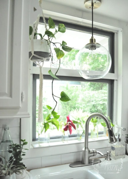 Green house plants as kitchen window decor