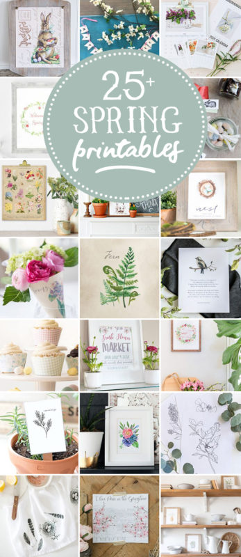 25+ free spring printables for your home decor!