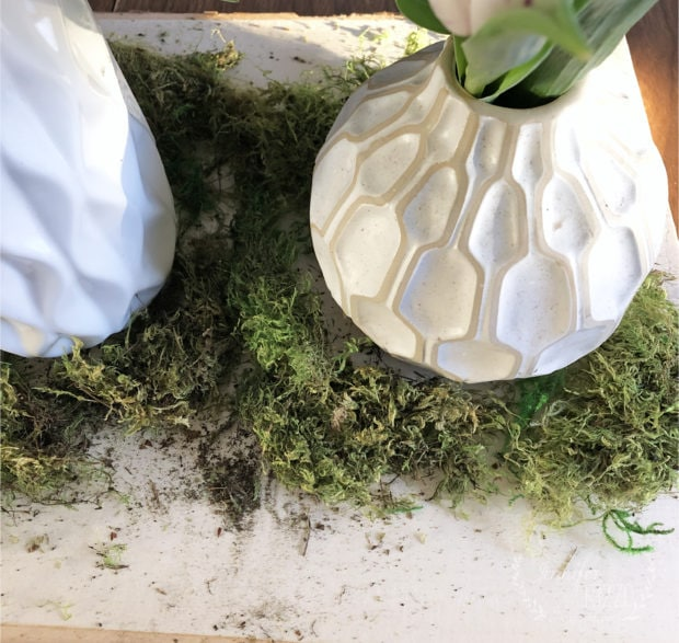 Moss and vase on wood slab as a centerpiece Jennifer Rizzo