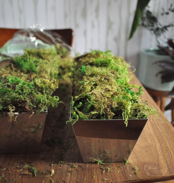 Cover dry floral foam with moss