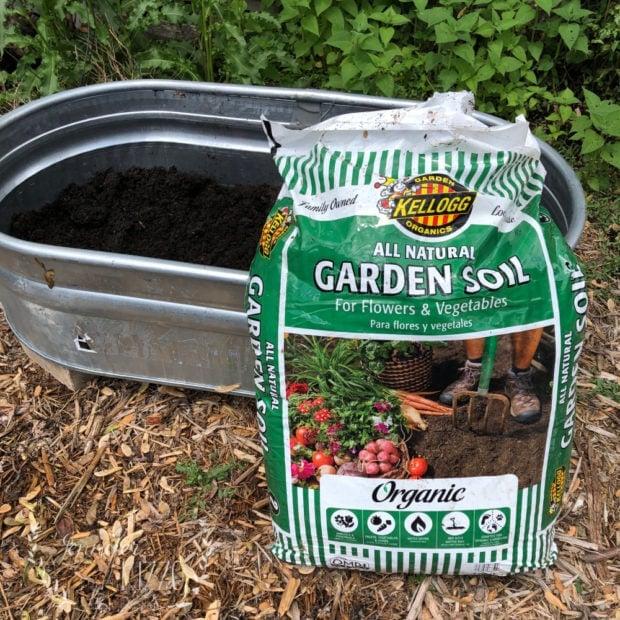Add soil to a stock tank planter